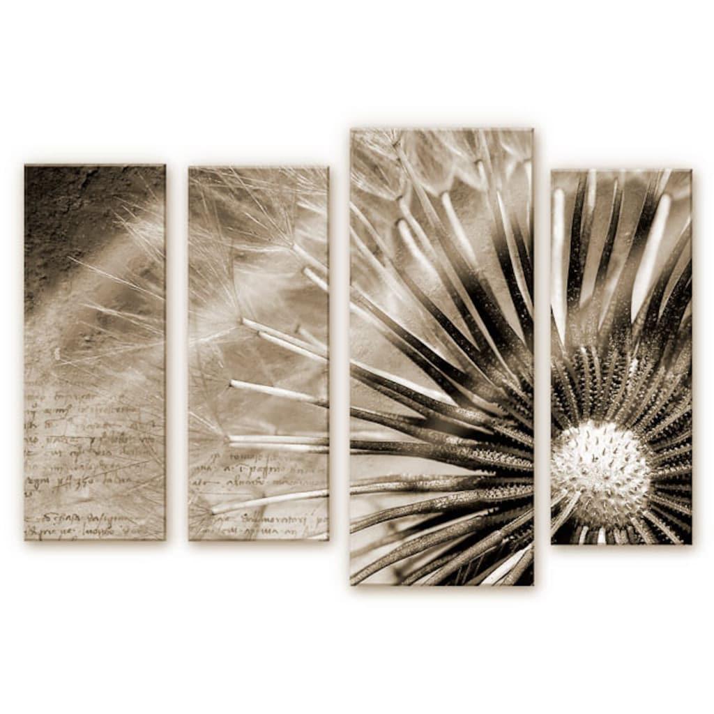 Wall-Art Mehrteilige Bilder »Pusteblumen Poesie (4-teilig)«, (Set, 4 St.)