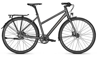 Raleigh Urbanbike »NIGHTFLIGHT PREMIUM«, Nabenschaltung kaufen