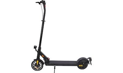 Iconbit E-Scooter »E-Scooter Delta Pro« kaufen