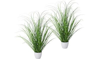 Creativ green Kunstgras »Grasbusch« (2 Stück) kaufen