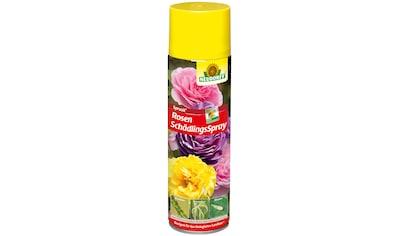 Neudorff Pflanzenschutzmittel »Spruzit Rosen Schädlings Spray«, 400 ml kaufen