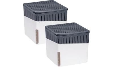 WENKO Luftentfeuchter »Cube Grau«, 1000 g, 2er Set kaufen
