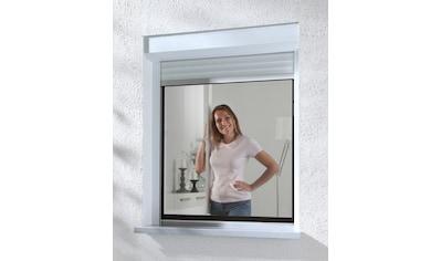 HECHT Insektenschutz - Fenster »COMPACT«, anthrazit/anthrazit, flächenbündig, BxH: 100x120 cm kaufen