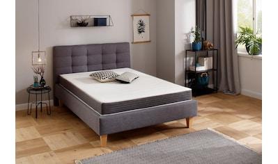 Komfortschaummatratze »Nova Universal«, Beco, 17 cm hoch kaufen