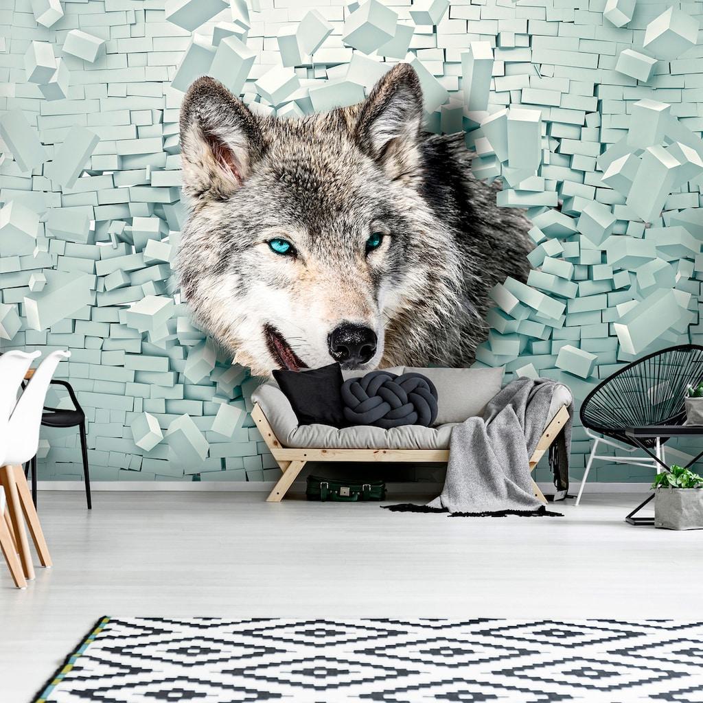 Consalnet Fototapete »Wolf kommt aus der Wand«, Motiv