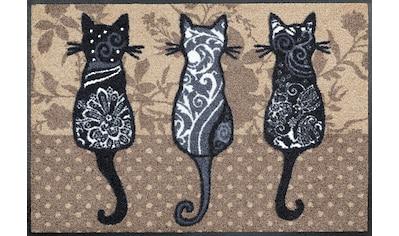 wash+dry by Kleen-Tex Fußmatte »Katzenbande«, rechteckig, 7 mm Höhe, Schmutzfangmatte,... kaufen