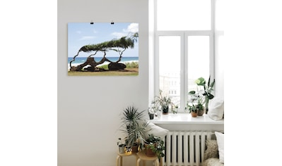 Artland Wandbild »Landschaft, Hawaii«, Strand, (1 St.), in vielen Größen & Produktarten - Alubild / Outdoorbild für den Außenbereich, Leinwandbild, Poster, Wandaufkleber / Wandtattoo auch für Badezimmer geeignet kaufen
