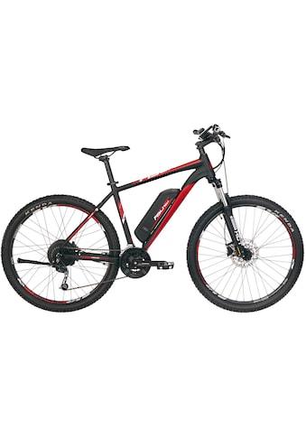 FISCHER Fahrräder E-Bike »EM 1726.1«, 24 Gang, Shimano, Deore, Heckmotor 250 W kaufen