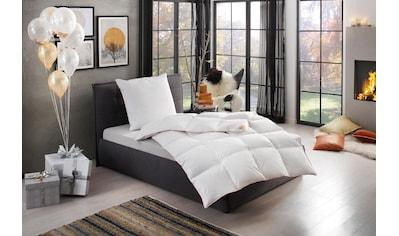 Gänsedaunenbettdecke + Kopfkissen, »Kalle«, RIBECO kaufen