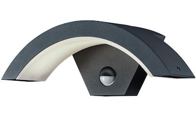 TRIO Leuchten,LED Außen - Wandleuchte»OHIO«, kaufen