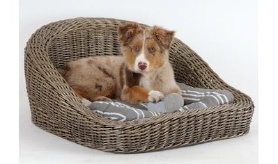 SILVIO design Tierkorb »Timmy«, in versch. Größen kaufen