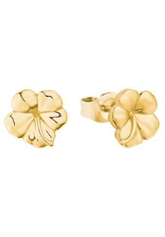 Amor Paar Ohrstecker »Hibiskusblüte, 2027407« kaufen