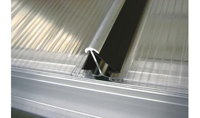 VITAVIA Windsicherung »Gr. S«, für Gewächshäuser mit 4 mm Hohlkammerplatten kaufen
