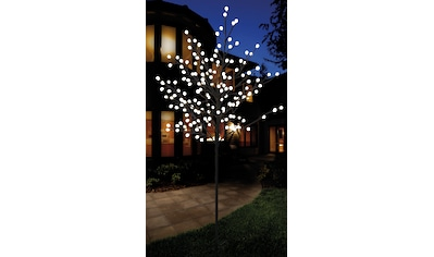 Weihnachtsbeleuchtung Aussen Motive.Weihnachtsbeleuchtung Für Außen Lichterketten Kaufen Baur