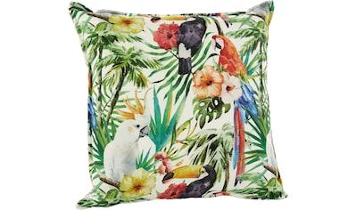 H.O.C.K. Dekokissen »Paradise 8«, im tropischen Design kaufen