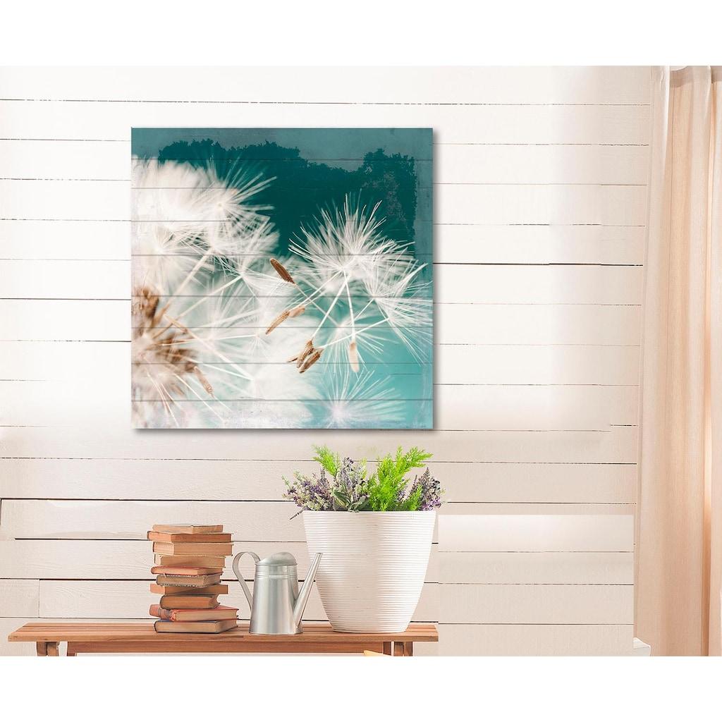 Home affaire Holzbild »Pusteblume«, 40/40 cm