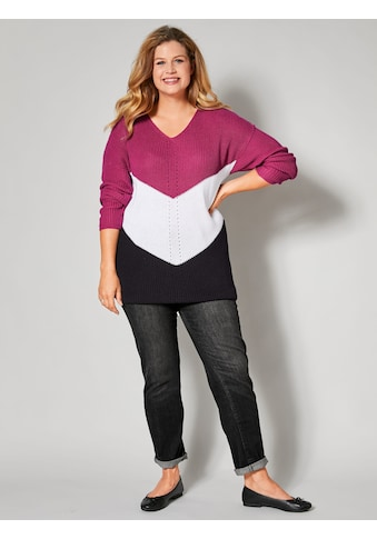 Janet & Joyce by Happy Size Pullover mit Color - Blocking - Muster kaufen