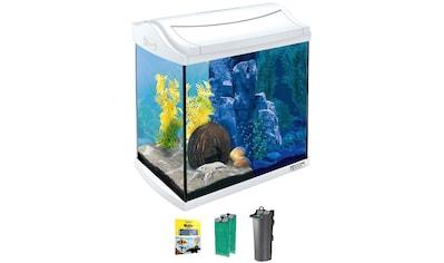 TETRA Aquarium »AquaArt LED Discovery Line«, 30 Liter, BxTxH: 39,5x28x43 cm, weiß kaufen