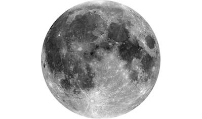 KOMAR Tapete »Moon« kaufen