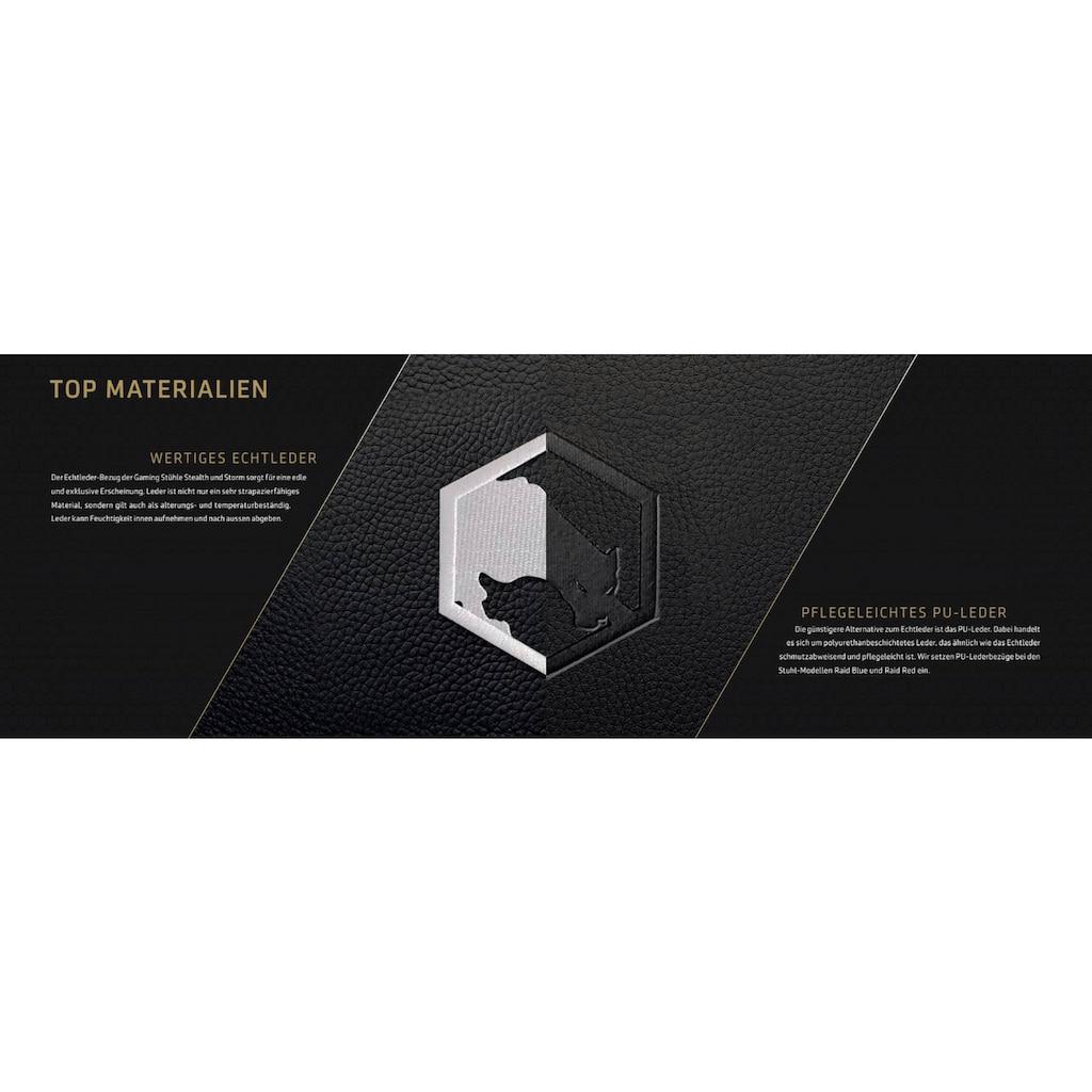 Joule Performance Gaming-Stuhl »Alcantara«, WERTIGES ECHTLEDER