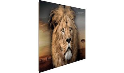Reinders! Deco-Panel »Löwenkopf« kaufen