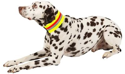 HEIM Hunde-Halsband »Signalhalsband«, Textil kaufen