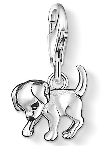THOMAS SABO Charm - Einhänger »Hunde - Welpe, 0885 - 007 - 12« kaufen