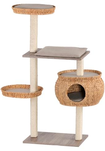 SILVIO design Kratzbaum »Stufenboy Cosy«, hoch, BxTxH: 110x36x135 cm kaufen
