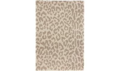 my home Hochflor-Teppich »Gemma«, rechteckig, 35 mm Höhe, weicher Flor, Leopard,... kaufen