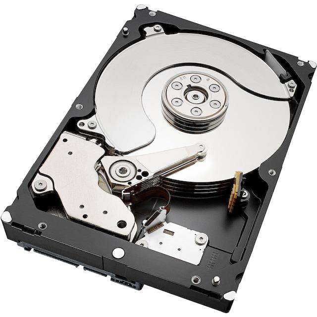 Seagate »Exos 7E8 6TB SATA 512e/4Kn« HDD-Server-Festplatte