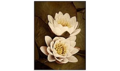 Artland Glasbild »Seerosenblätter Duo«, Blumen, (1 St.) kaufen
