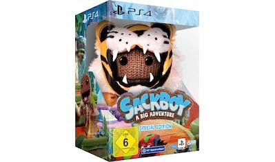 Sackboy: A Big Adventure Special Edition PlayStation 4 kaufen