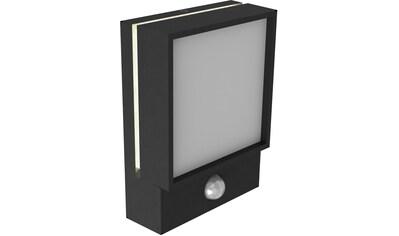 Nordlux LED Außen-Wandleuchte »Egon«, LED-Board, Warmweiß, Bewegungsmelder kaufen