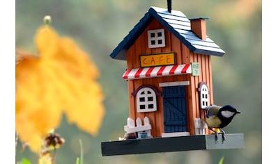 DOBAR Vogelhaus »Café«, BxTxH: 18x18x23 cm kaufen