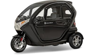 ECONELO Elektromobil »F1«, mit vor Ort Einweisung kaufen
