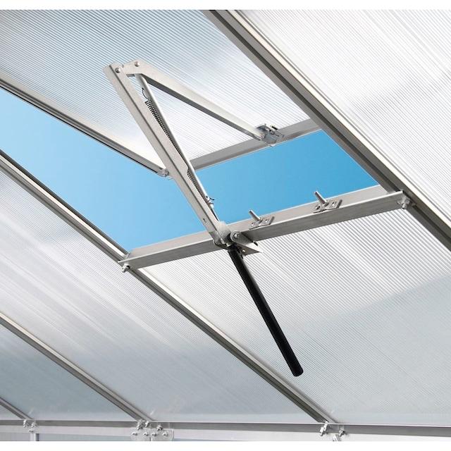 VITAVIA Komplett-Set: Gewächshaus »Diana 8300«, BxTxH: 254x317x255 cm, 3 mm, mit 3-tlg. Zubehör