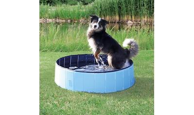 TRIXIE Planschbecken »Hundepool«, ØxH: 160x30 cm kaufen