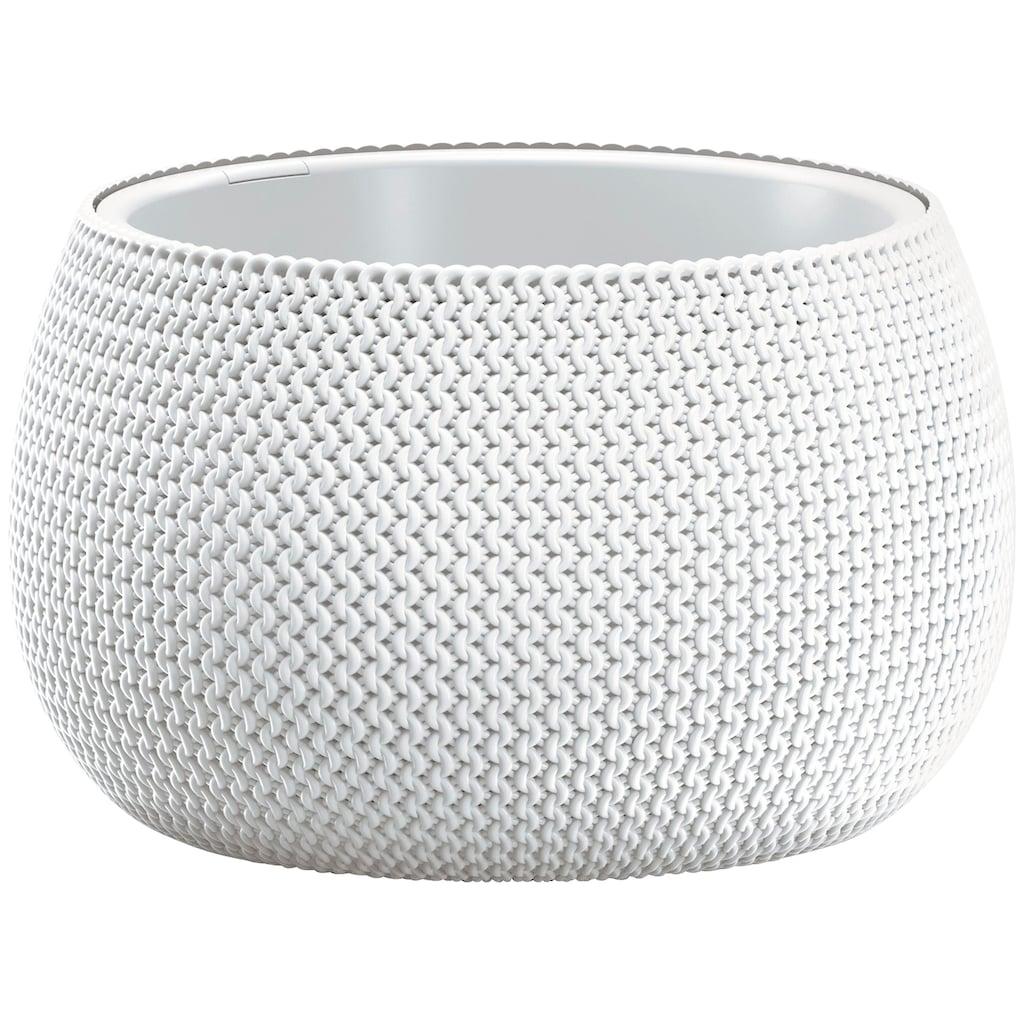 Prosperplast Pflanzkübel »Splofy Bowl«, ØxH: 47,8x30 cm