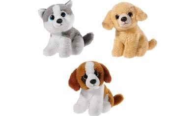 """Heunec® Kuscheltier """"Mini Mi Hunde Set"""", (Set, 3 Stück) kaufen"""