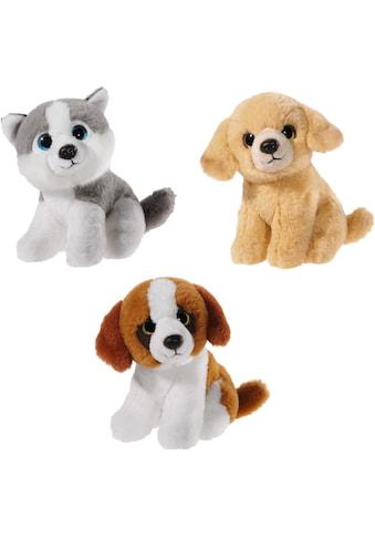 Heunec® Kuscheltier »Mini Mi Hunde Set« kaufen