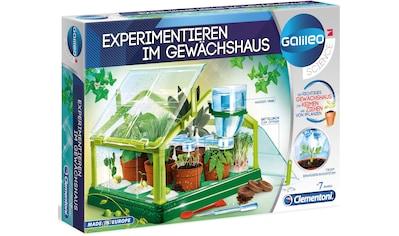 Clementoni® Experimentierkasten »Galileo - Experimentieren im Gewächshaus«, Made in Europe kaufen