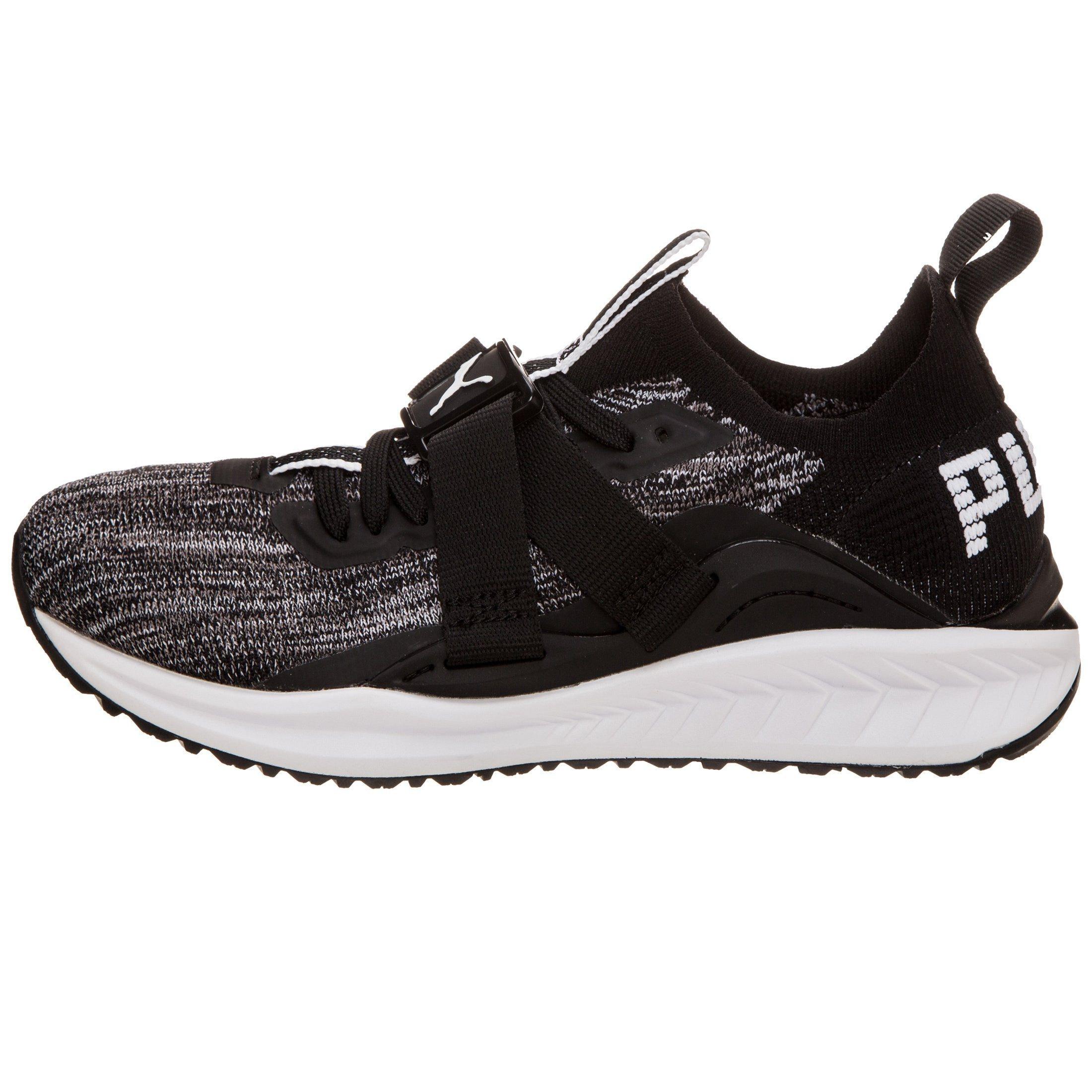 PUMA Sneaker Ignite Evoknit Lo Lo Evoknit 2 online bestellen | Gutes Preis-Leistungs-Verhältnis, es lohnt sich aa7872