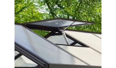 Vitavia Dachfenster kaufen