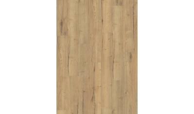 EGGER Laminat »Aqua+ EHL106 Creston Eiche natur«, 8mm, 1,995m² kaufen