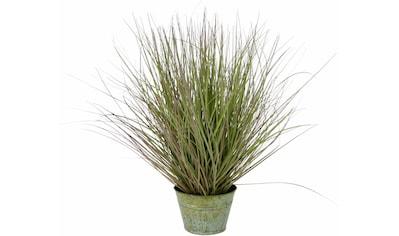 I.GE.A. Kunstpflanze »Grasbusch« (1 Stück) kaufen