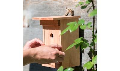 Windhager Nistkasten »Birdy« kaufen