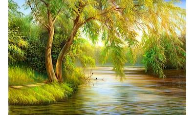 Papermoon Fototapete »Summer Wood Lake« kaufen