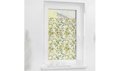 LICHTBLICK ORIGINAL Fensterfolie »Fensterfolie selbstklebend, Sichtschutz, Limone -... kaufen