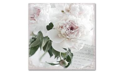 queence Acrylglasbild »Poesie&Rose«, 50x50 cm kaufen