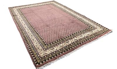 morgenland Wollteppich »Mir Teppich Mino«, rechteckig, 8 mm Höhe kaufen